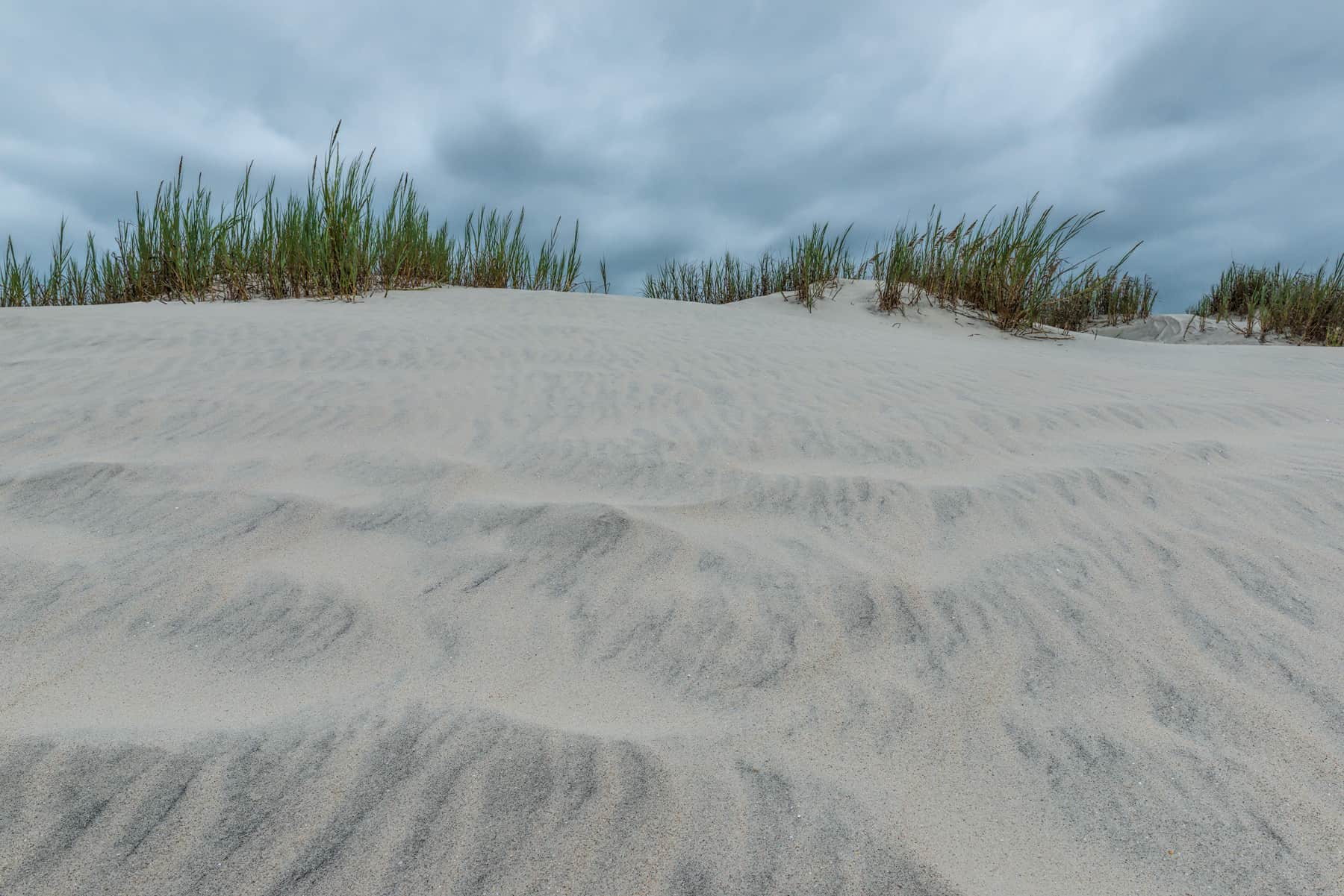 Up The Dune - SC_3119