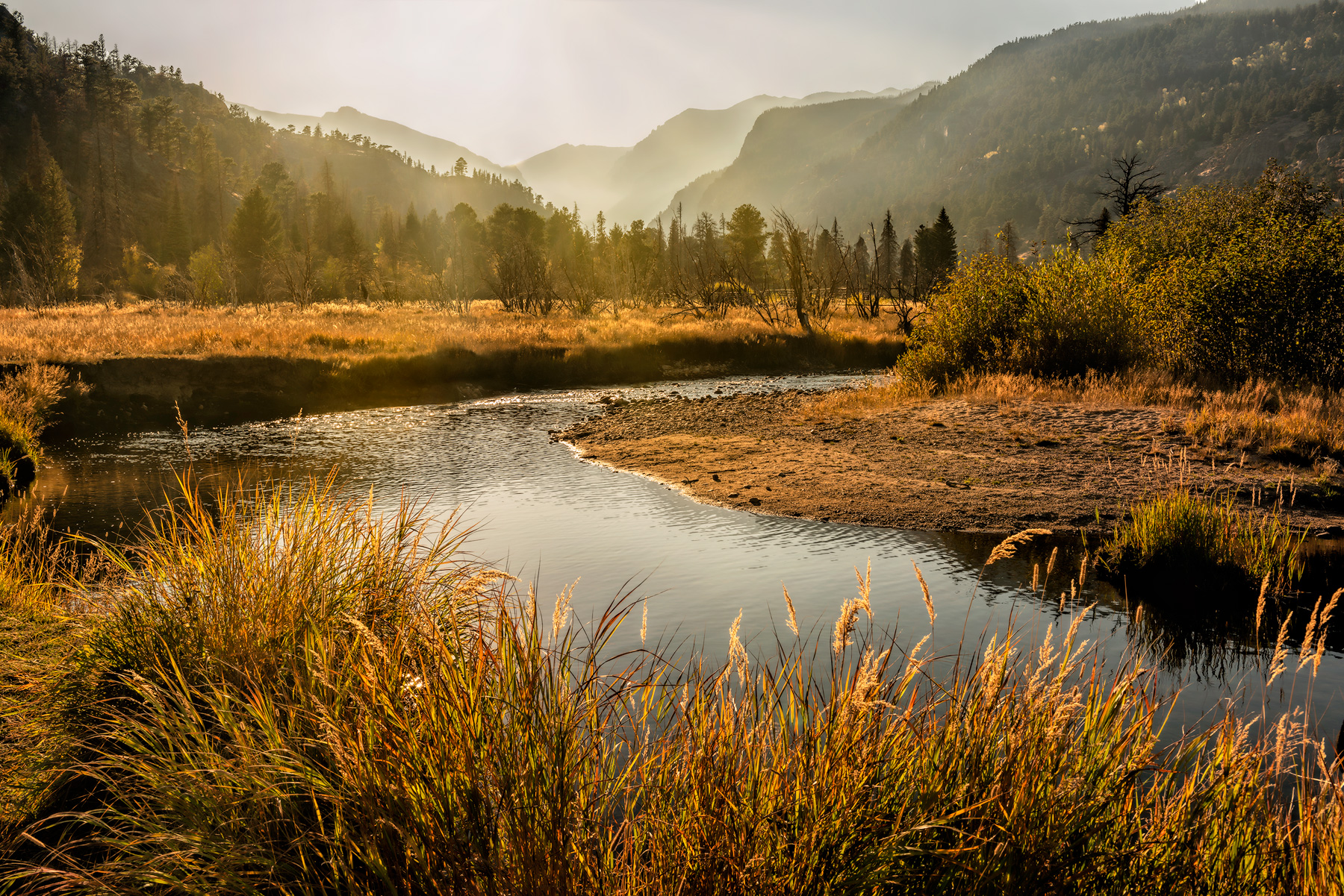 Afternoon Delight - RMNP_0762