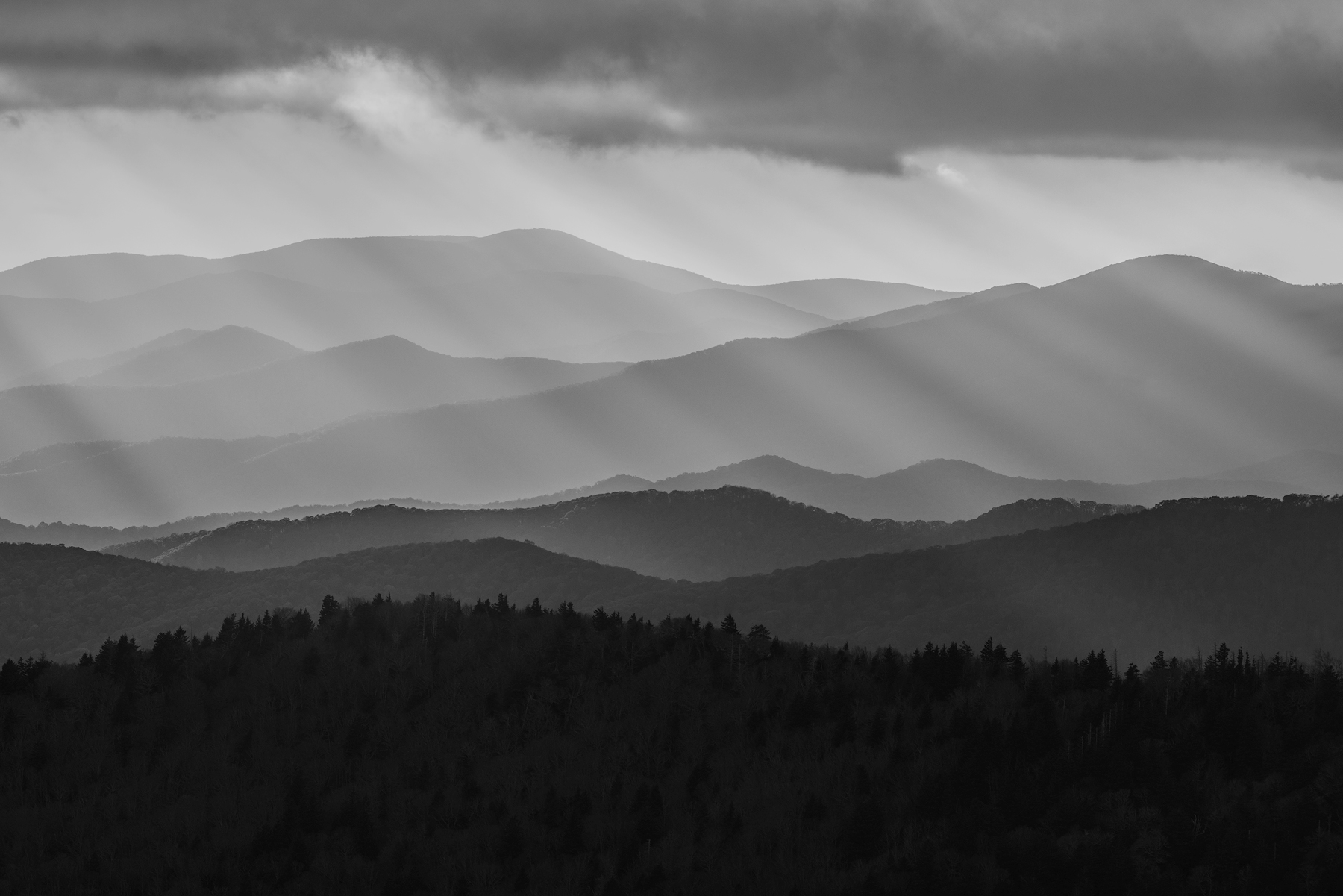 Beyond Reach - GSMNP_8270bw