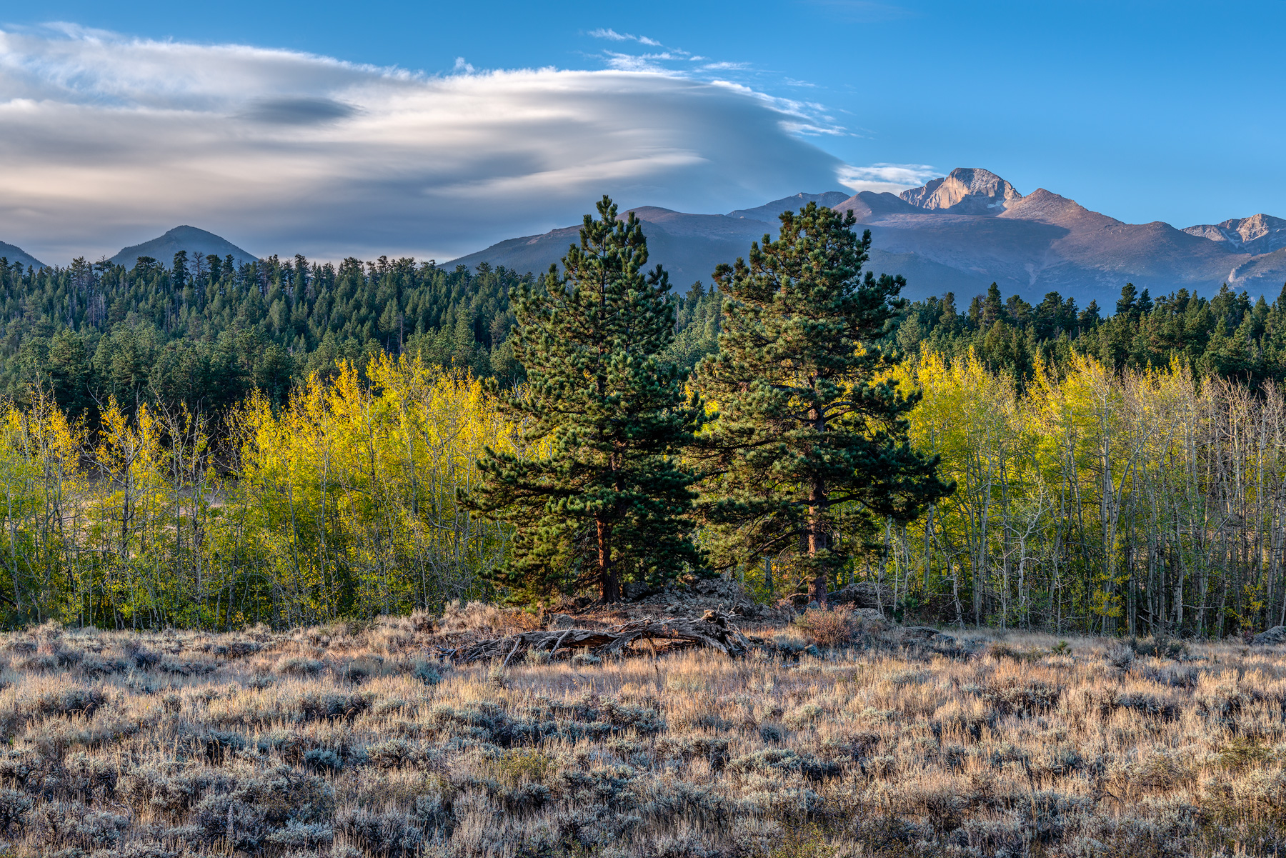 Morning At Beaver Meadows - RMNP_0106
