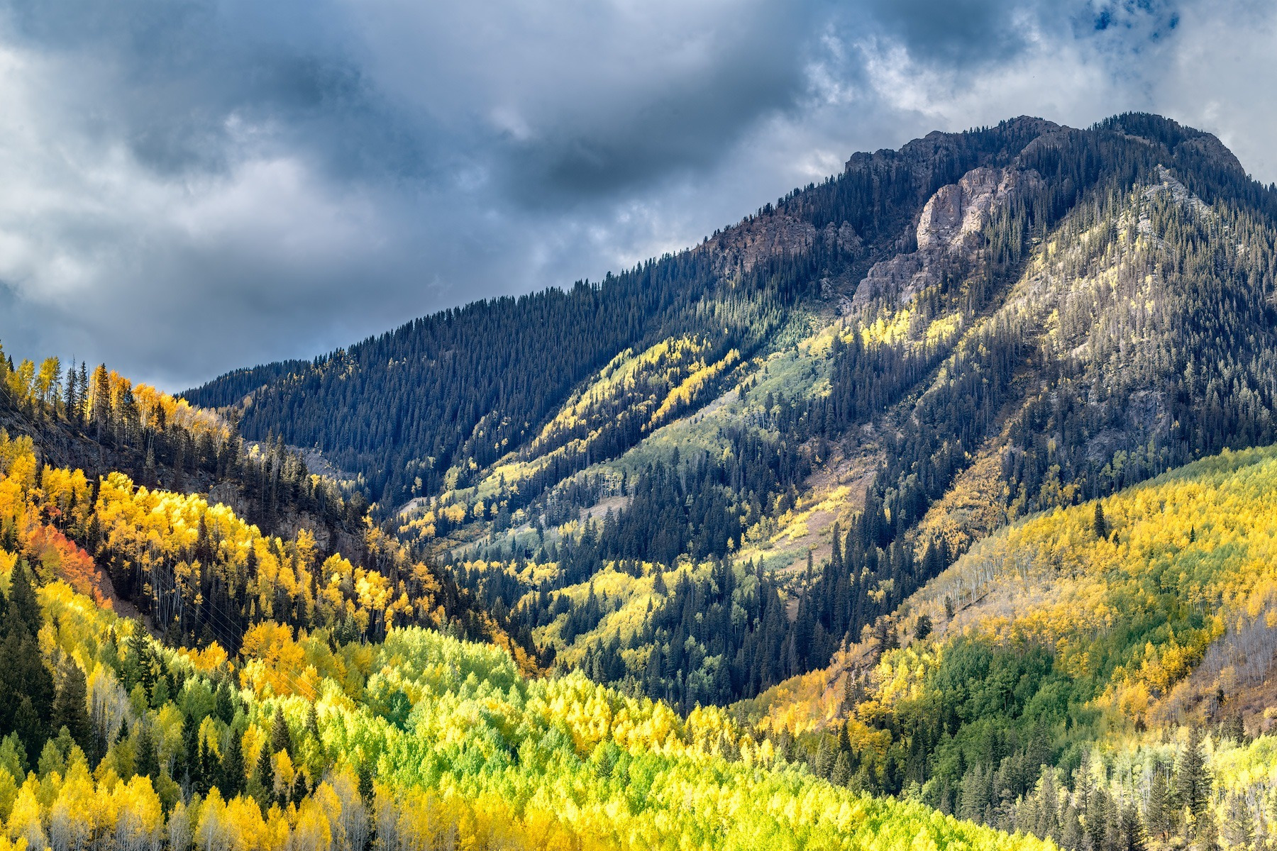 Mountain Tapestry - CO_1721