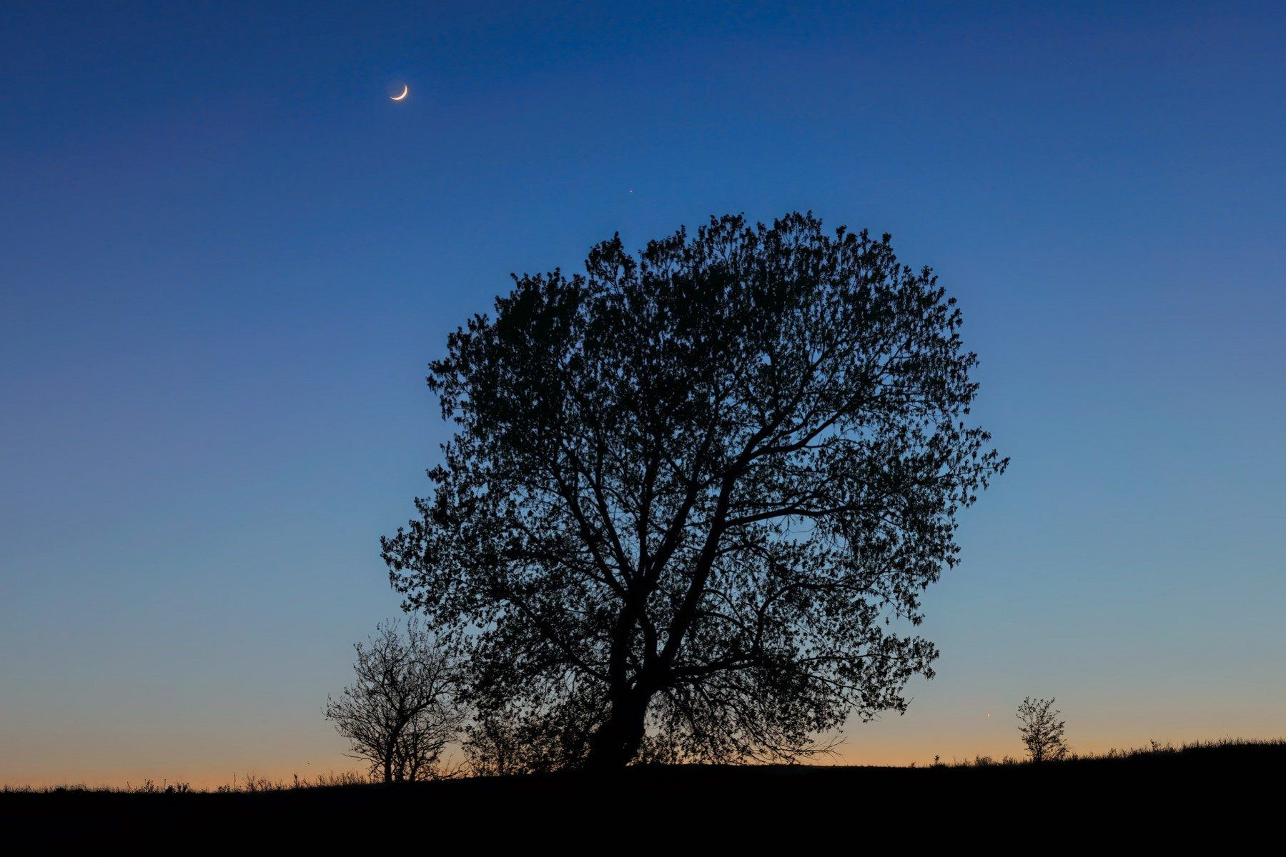 Under The Crescent Moon - TRSP_0717