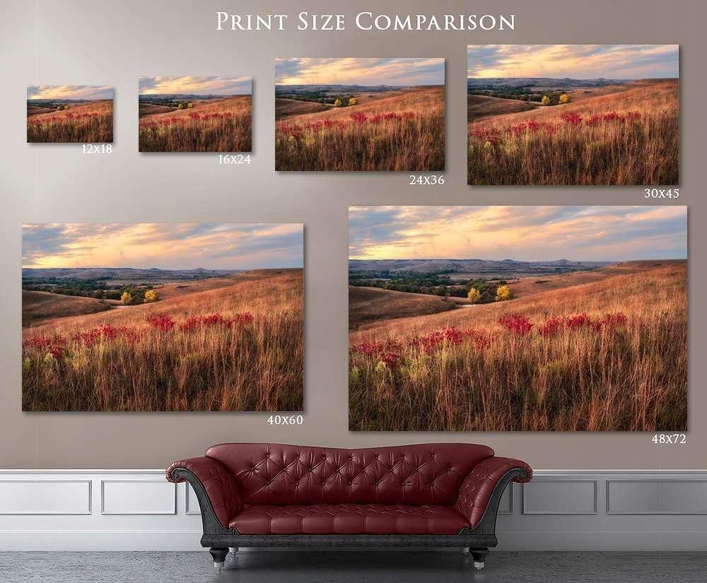 Fine Art Prints Nature Photography