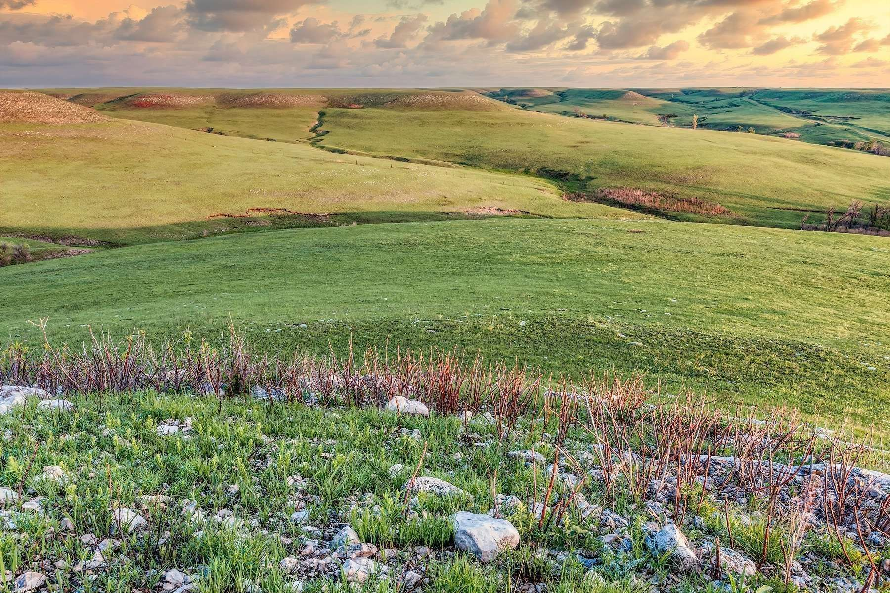 Springtime across the Kansas Flint Hills. Can you feel the cool breeze? Smell the rich soil of the prairie? Hear the distant Meadowlarks?