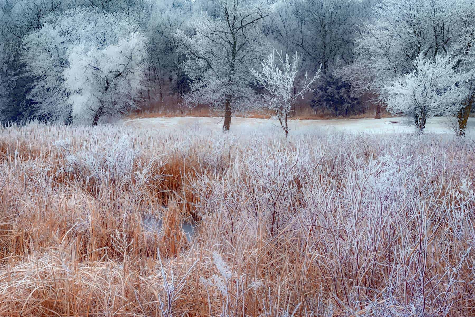 winter landscape photography in the prairies