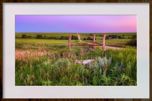 nature photography print framed